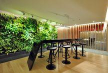 TSK // Green Offices