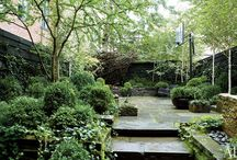 Yard gardens