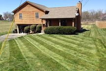 Lawn Stripes / by Melvin Houston