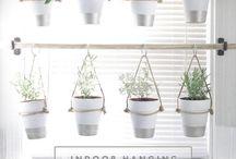 DIY : Garden Ideas