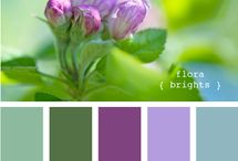 Colors: Purple & Green / by Shery Kearney