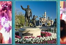 Disney Giveaways / Disney giveaways, sweepstakes, and contests.  Win a Disney vacation, Disney gift cards, and more!