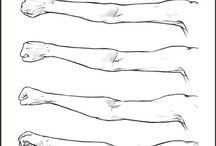 braços