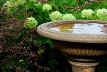 Bird baths / We love Bird Baths