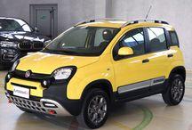 FIAT PANDA CROSS 1.3 MJT 4X4 80 CV, DEL 2014, €13.400