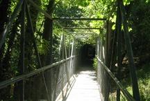 Hardscape: Pedestrian Bridges