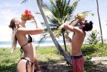 Bikini Babes  / Hollywood's hottest bikini gals!