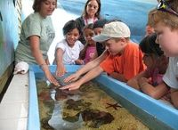Family Travel / by The Florida Keys and Key West