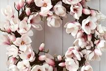 kwiaty rozne