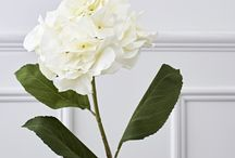 """Inspiration: Fleur de Brissi /  We have expanded our ranges and are absolutely delighted with our best ever collection of Faux Flowers & Foliage which we love to call """"Fleur de Brissi"""". Bigger and better, this range is an exciting mix of vibrant colours and stunning foliage. https://www.brissi.com/home-accessories/silk-flowers.html"""