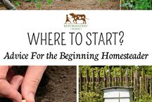 Homesteading Skills / How to Homestead / How to make money homesteading / Going back to the roots of our ancestors, and reducing my carbon footprint by means of homesteading. This board includes pins about how to start homesteading and how to make money on your homestead.