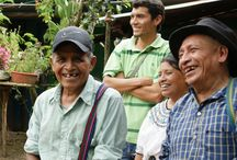 Fair Trade Coffee Growers / Where our fair trade certified, organic coffee comes from and the people who grow it.