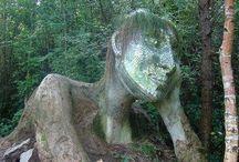 Sculpture / by Suzanne Garrett