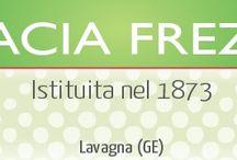 Farmacia frezzano_lavagna