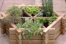 Garden Ideas / by Odom Family