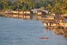 Papua : my homeland