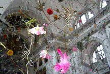 The Land Flourish in my actions (Pablo Neruda) / Decorazioni, Installazioni, Disegni, Dipinti, Scultura x Allestimento.