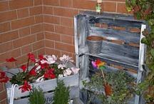 piante terrazzi e balconi