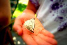 Nature / Smukke oplevelser i naturen