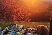 picnic, frying