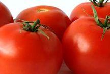 Tomato's Health Benefits / Read about the great health benefits of tomatoes (specifically Carmelina 'e...San Marzano® Italian Tomatoes!)