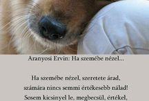 állatos idézetek
