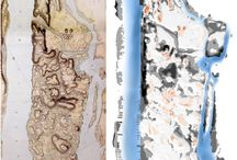 Manhattan by maps / by lizarewind