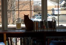 Library Cats / by Julie Hildebrand