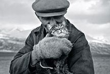 Suomalaisia valokuvaajia