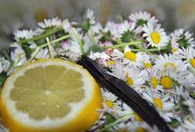 Gelee & Marmelade