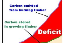 Carbon Dioxide Levels, Burning Biomass and Global Warming / Carbon Dioxide Levels, Burning Biomass and Global Warming