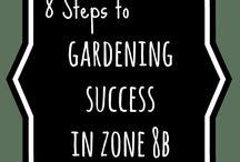 San Antonio gardening