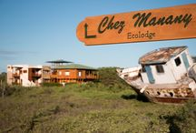 Sustaintable Tourism on Isabela Island, Galapagos / Chez Manany Galapagos Eco Lodge attaches importance to sustainable tourism to protect the island. Come in and inform you about the lodge and life on the island