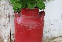 ~crocks-milk cans-pitchers~ / by Diane Appanaitis