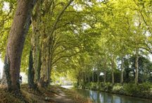 Cyclotourisme Canal du Midi et Canal latéral / Découvrir et apprécier des randonnées à vélo depuis et vers Toulouse notamment le long du Canal du Midi et du Canal Latéral Bordeaux-Toulouse