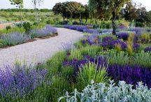Gardens , my work