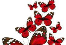 mariposa rojo