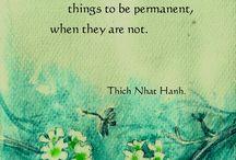 wisdom - Thich nhat