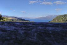 New Zealand Land scrap