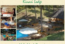 """All About Kinasi Lodge / Kinasi is a special place that reflects our dream of creating a wonderful retreat in which to enjoy one of Africa's finest marine parks. The design and style of Kinasi is somewhat eccentric """"tropical island"""" a bit eclectic and definitely individual, with influences from the Swahili Coast, African craftsmen, Morocco and Italy. The atmosphere is intentionally informal and homely."""