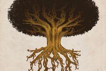 Arbres solitaires / Photos d'arbres isolés, en toutes saisons..... / by Jean-Claude MASSOU