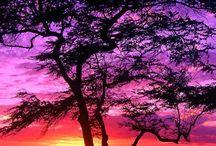 il tramonto e i suoi colori...magnifico!**