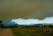 wildfire / by Kristi Matteson