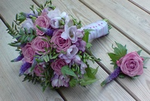 Autunmal lilac