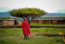 Мама Африка / Страничка об Африке и путешествиях по ней   #Кения #Африка #ТурывКению #Масаимара #Амбосели #ПляжиКения #русскийгидКения #паркиКения #сафаритур