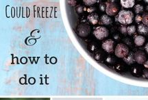 FOODS THAT FREEZE WELL