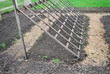 climbing trellis for lettuce and cukes