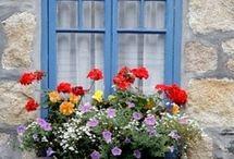 pencereler kapılar