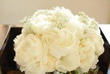 Wedding Flowers / by Amanda Pritchard