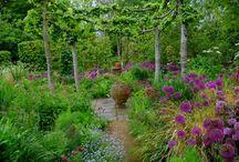 kedvenc kertészek kertjei